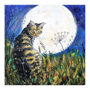 Annabel Langrish Cat and the Moon