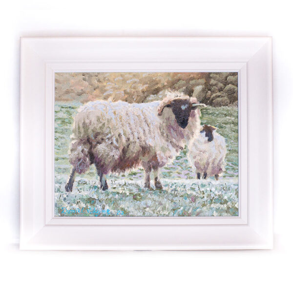 Danny Lyne Fine Art Originals Ewes on a Frosty Morning